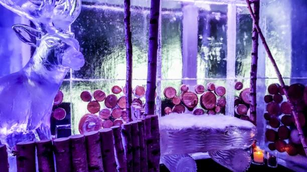 Ice-kube-bar2